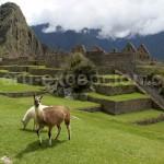 Interview de Julien Maillard qui nous fait découvrir le Pérou