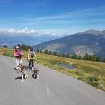 A part randonner, que faire en été dans le Val d'Hérens ?