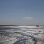 3 sorties insolites pour découvrir la Baie de Somme en toute sécurité