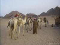 Sortie-en-quad-dans-le-désert-égyptien