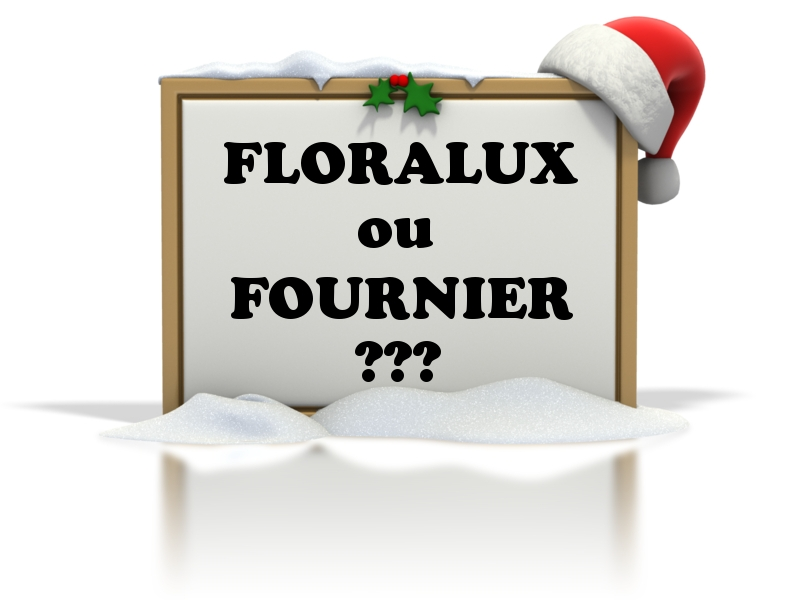 Meilleur marché de Noël en pépinière belge: Floralux ou Fournier ?
