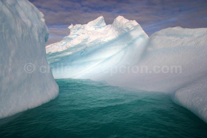 Découverte d'une croisière en Antarctique avec Julien Maillard