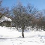 Neige, douceur ou exotisme pour un séjour d'hiver en France ?