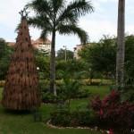 Souvenir inoubliable : ambiance Noël au Mexique à Playa del Carmen