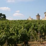 Que de prestigieux vignobles à découvrir dans le Médoc !
